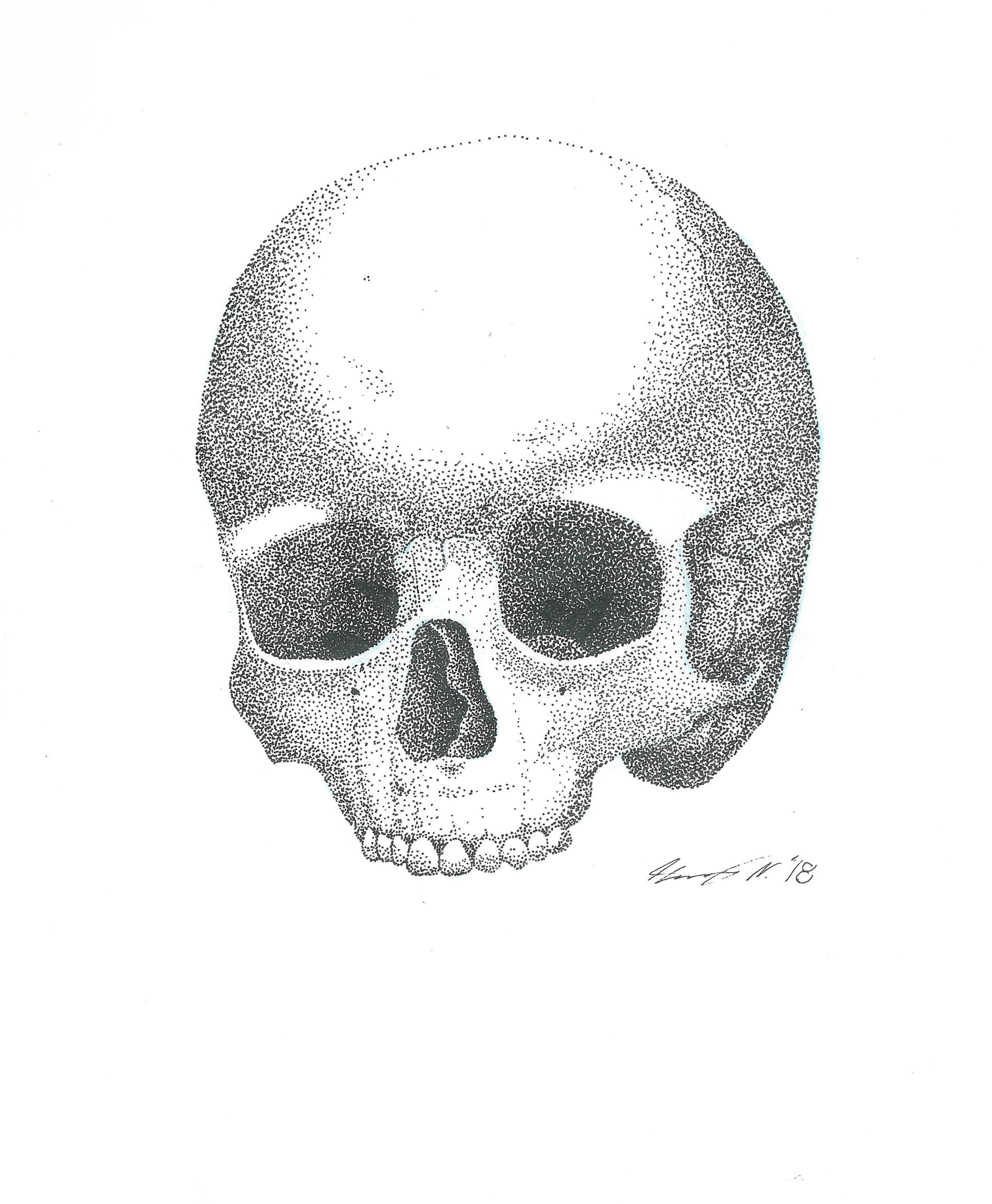 Skull 1.jpg