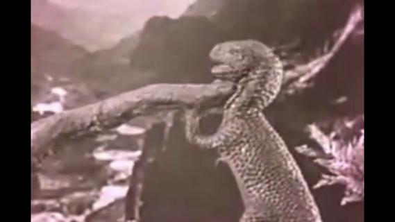 Dinosauria, We