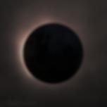Blackout (2019)