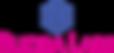 rudra_logo.png