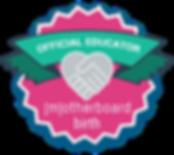 Motherboard Educator Badge pink.png