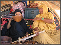 Zayar Stick Being Used to Prevent Stopping Gavage