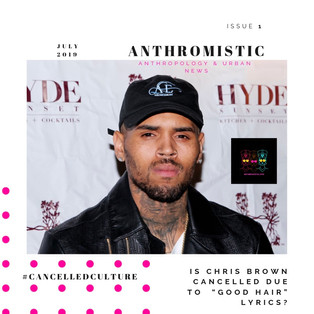 Is Chris Brown Cancelled Due To Colorist Lyrics?