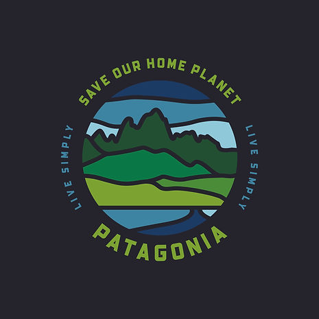Patagonia (Save Our Home Planet) Black T