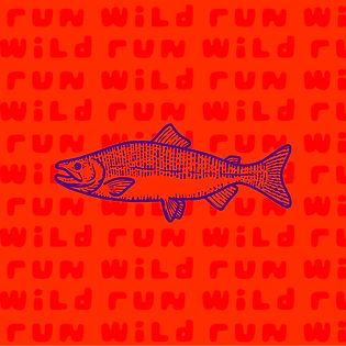 Run Wild-01.jpg