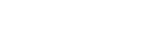 Sterling playmakers logo (white).png