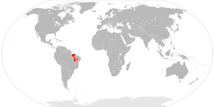 World Map - Brazil.jpg