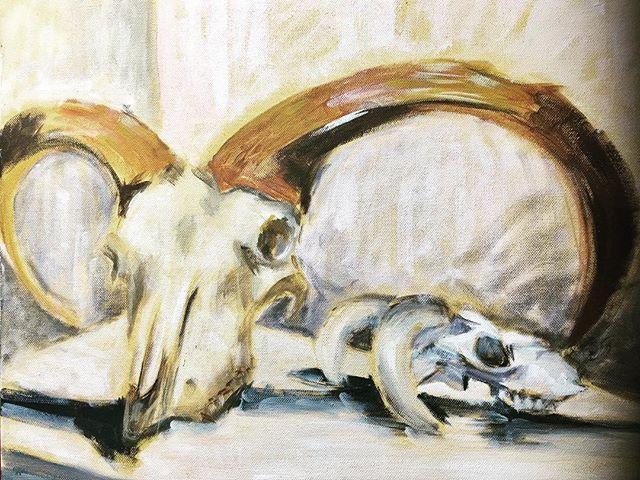 Skull Study (2012)