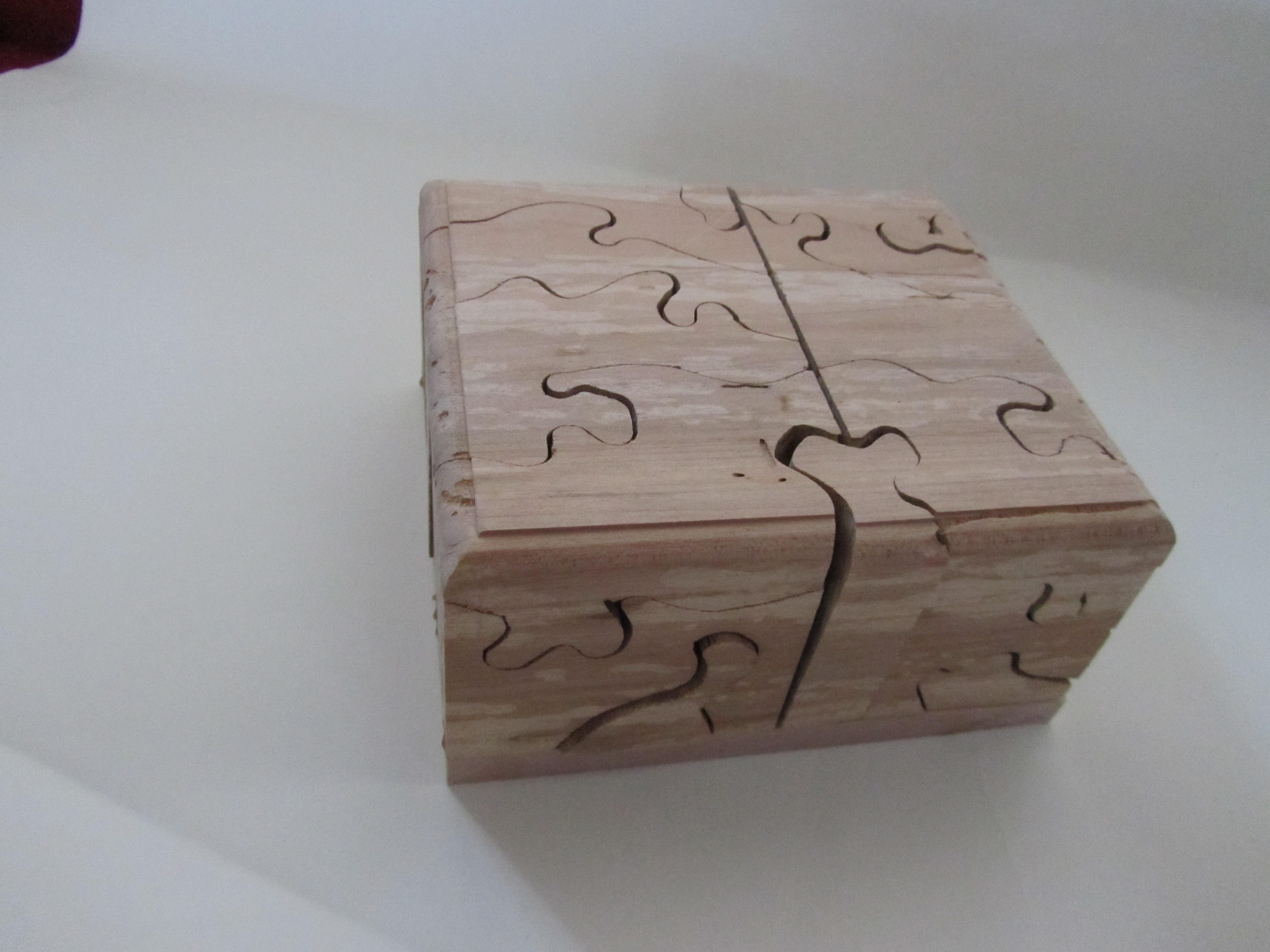 PB#308 23 Piece-Puzzle $50