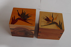 Bird of Paradise Tea Boxes