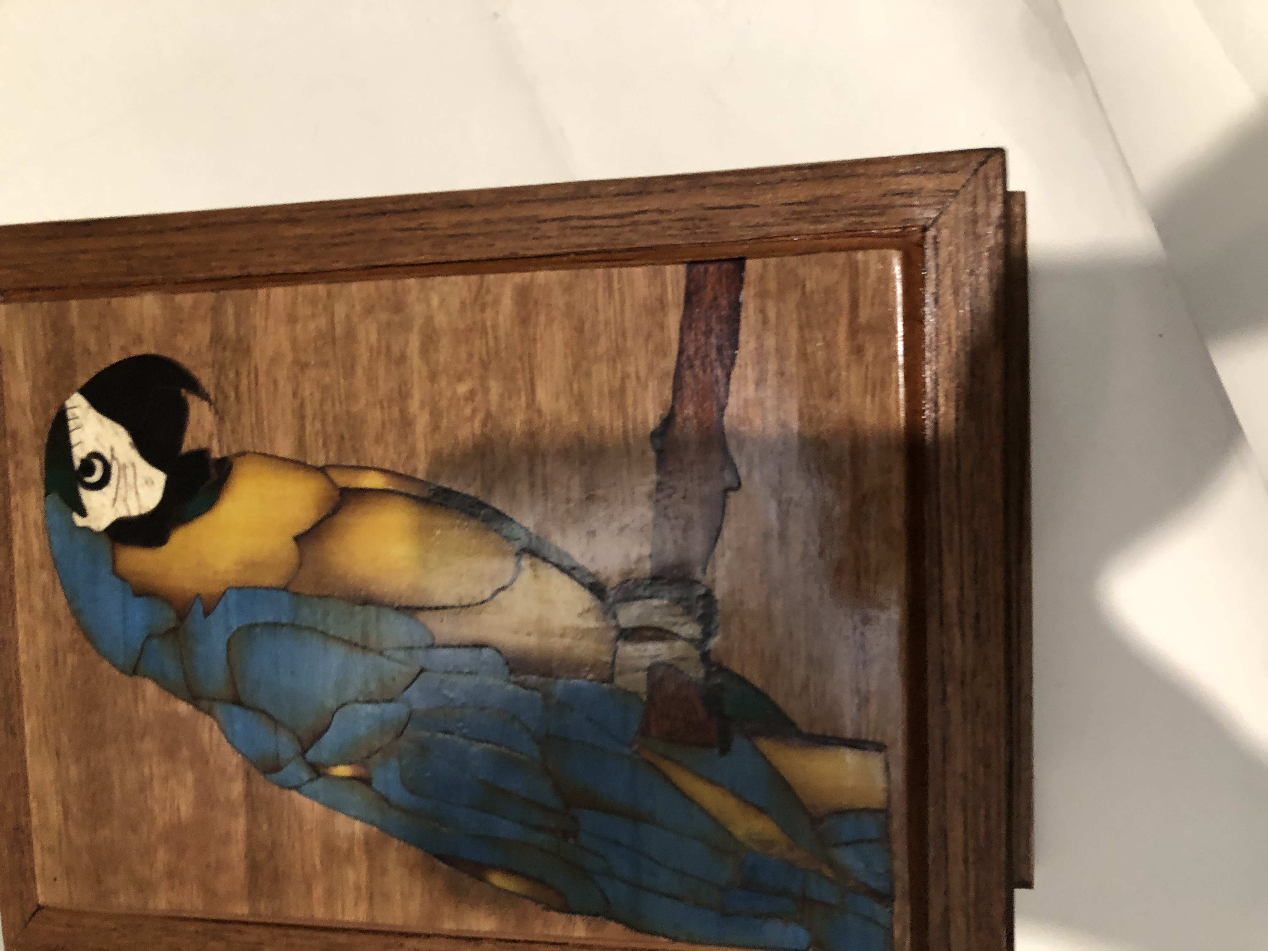 PB#323 French Marquetry Inlay Blue & Yellow Macaw $120