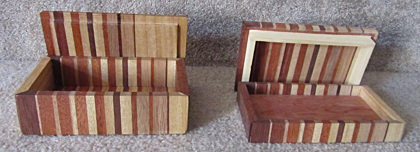 Small zebra boxes Barb