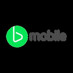 bmobilePDG_grey-01.png