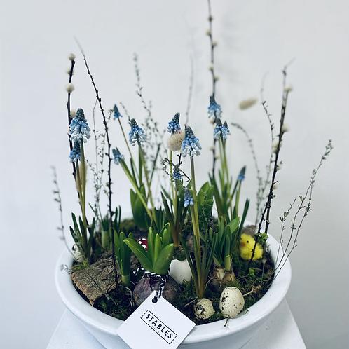 Flowering garden arrangement