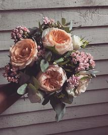 Big blowsy _david_austin_roses #juilet f
