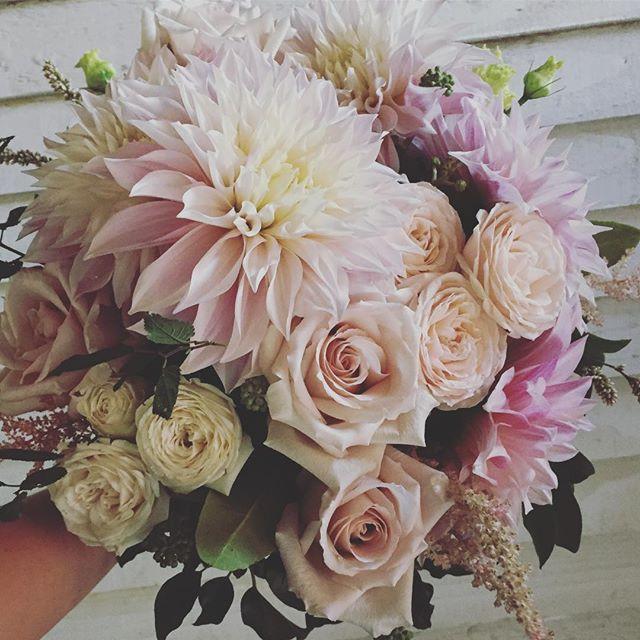 Big lush blooms #blushflowers #bridebouq