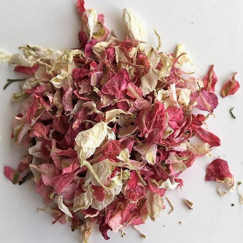 Pink Ivory Blush Delphinium Petal Confetti - 1 Litre