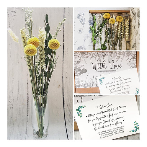 Yellow Craspedia Billy Button Dried Flower Posie Letterbox Gift