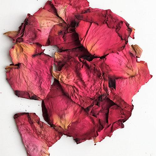 Raspberry Velvet Rose Petal Confetti