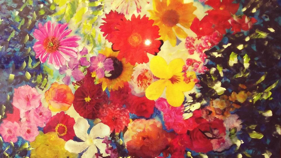 Donna Sved Flower