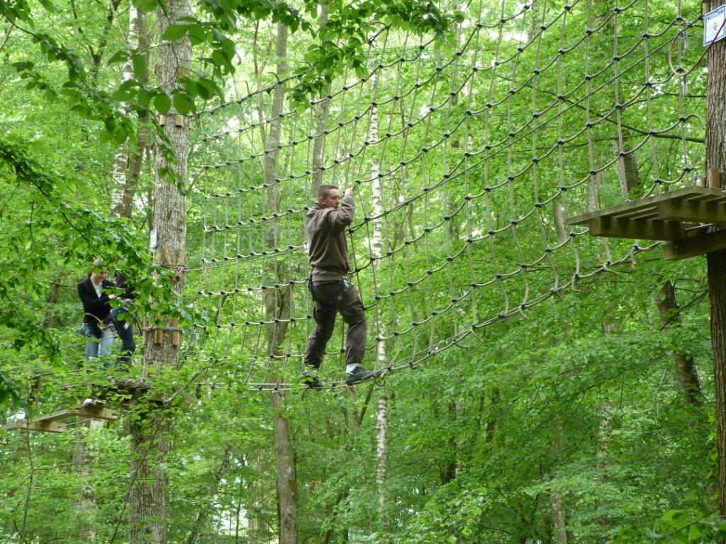 Zip-line & Tree top climbing