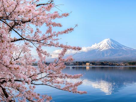 Japon, Ikigaï, etc...