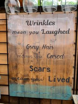 Wrinkles, Gray Hair & Scars.jpg