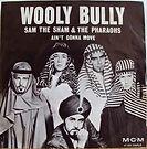wooly bully.jpg