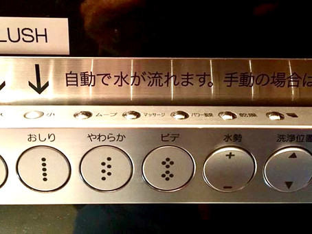 Going to the Bathroom in Japan