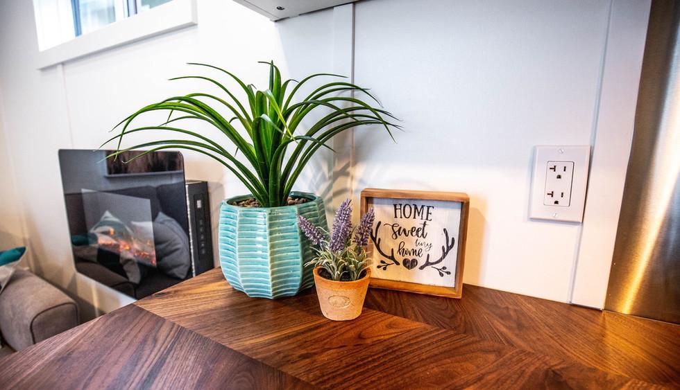 Sunshine Tony homes interior 9 (1 of 1).