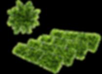pannelli solari, sostanibilità, green