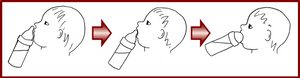 On présente le biberon au nez comme au sein afin de favoriser l'ouverture de la bouche