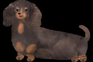 Hundetraining, Einzeltraining