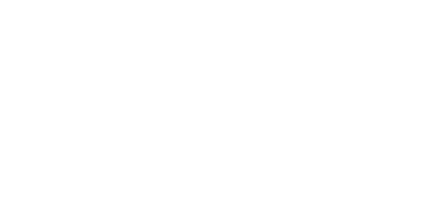 logo_stier_branco_300px.png