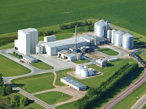 """Pandemic is Crushing the Ethanol Market"""