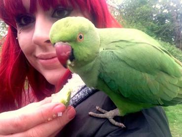 Rae Gellel The Animalist Animal Rescue