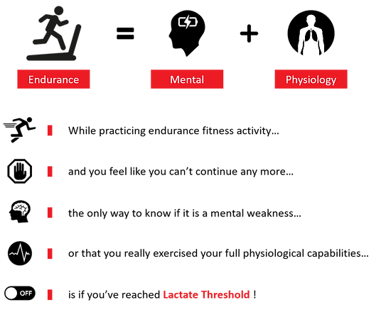 endurance 2.png