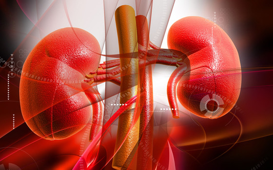 Preserving Kidney Function When You Have Diabetes