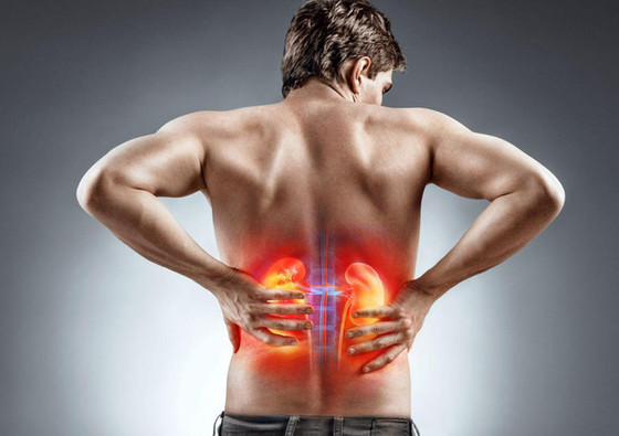 Blood Pressure & Its Effects On Your Kidneys