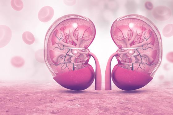 Anemia & Kidney Disease
