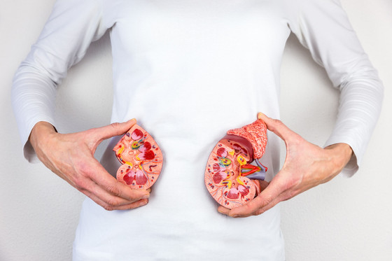 How To Prevent Kidney Disease
