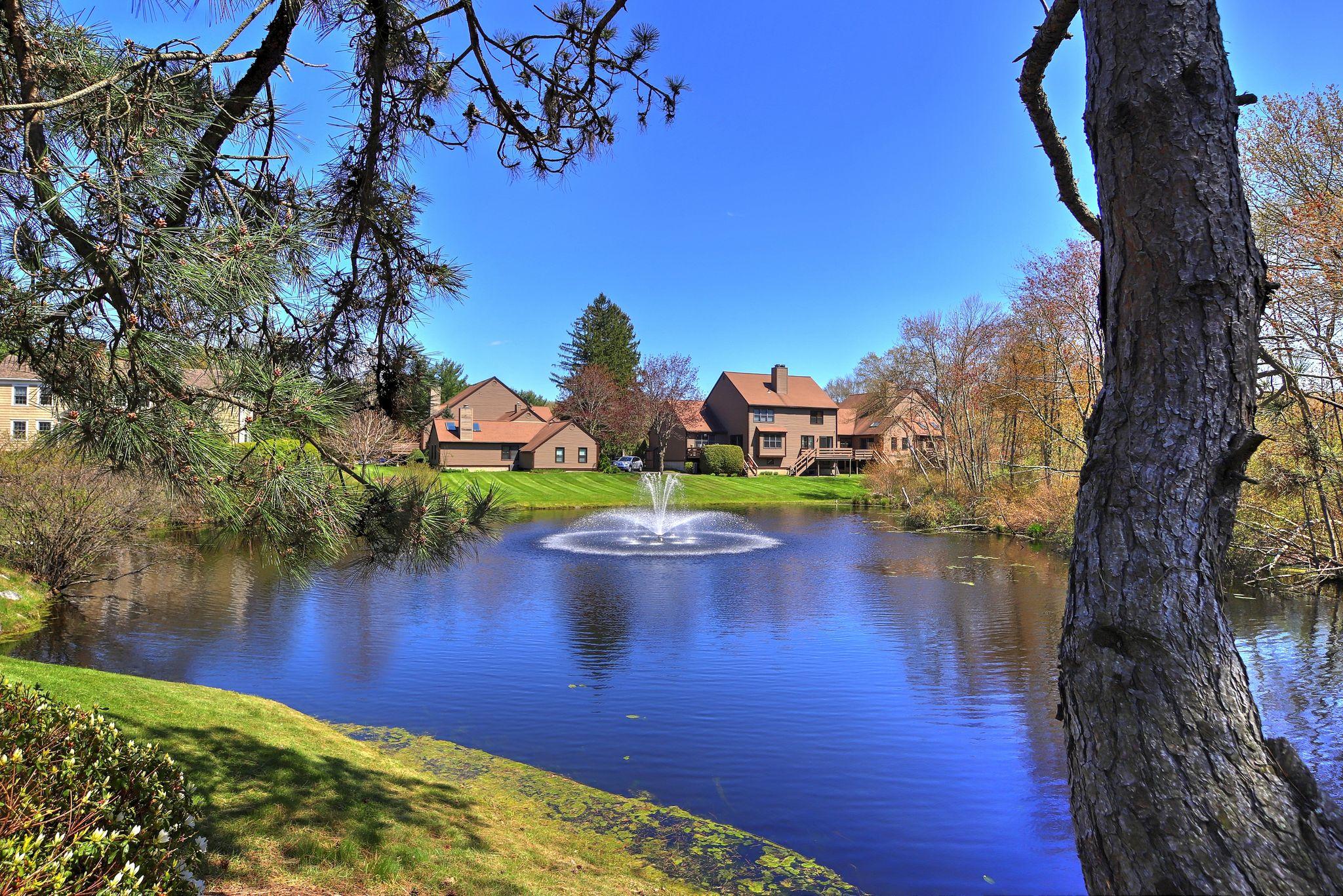 northbrook condo pond