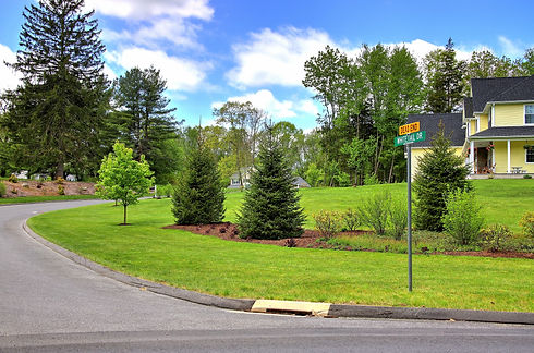 Deer Meadows feature photo - to replace