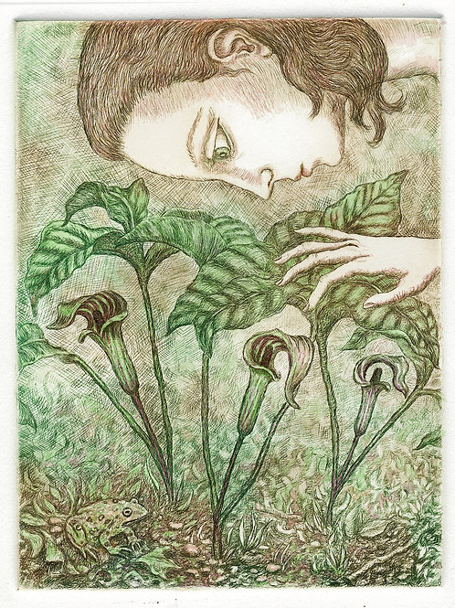 Gina Litherland - Jack in the Pulpit