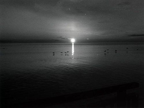 Michael Bunton - Serenity