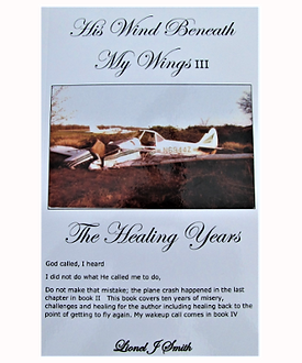 His Wind Beneath My Wings The Healing Years Cover