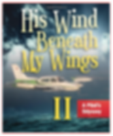 His Wind Beneath My Wings A Pilot's Odyssey Cover