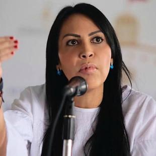 AN solicitó a la comunidad internacional tomar acciones para proteger a los venezolanos