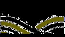 Ezemvelo Logo Plain.png