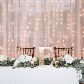 Arizona Light Rentals Wedding Twinkle Drape